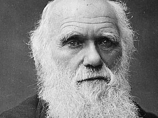 A kövületek Darwin ellen vallanak